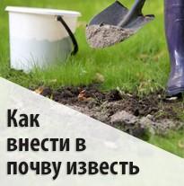 Как внести в почву известь