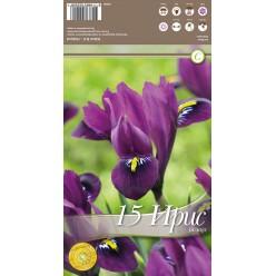 Ирис Reticulata J.S. Dijt. 15 шт/уп  р.5/6 каперс 108060