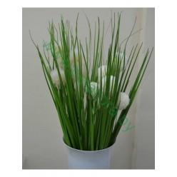 Трава высокая в пучке с одуванчиком микс
