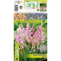 Сцилла Hispanica Rosea 8шт р.7/8 луковица 12426